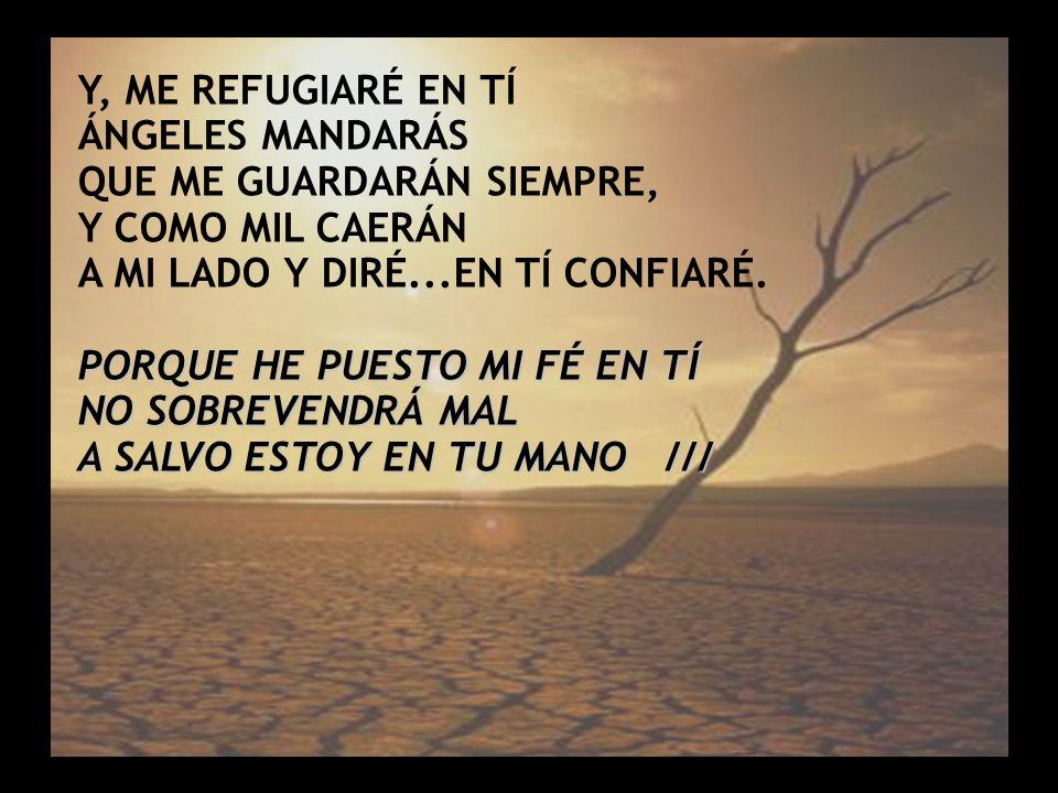 Salmo 91 (2) Y, ME REFUGIARÉ EN TÍ ÁNGELES MANDARÁS QUE ME GUARDARÁN SIEMPRE, Y COMO MIL CAERÁN A MI LADO Y DIRÉ...EN TÍ CONFIARÉ. PORQUE HE PUESTO MI