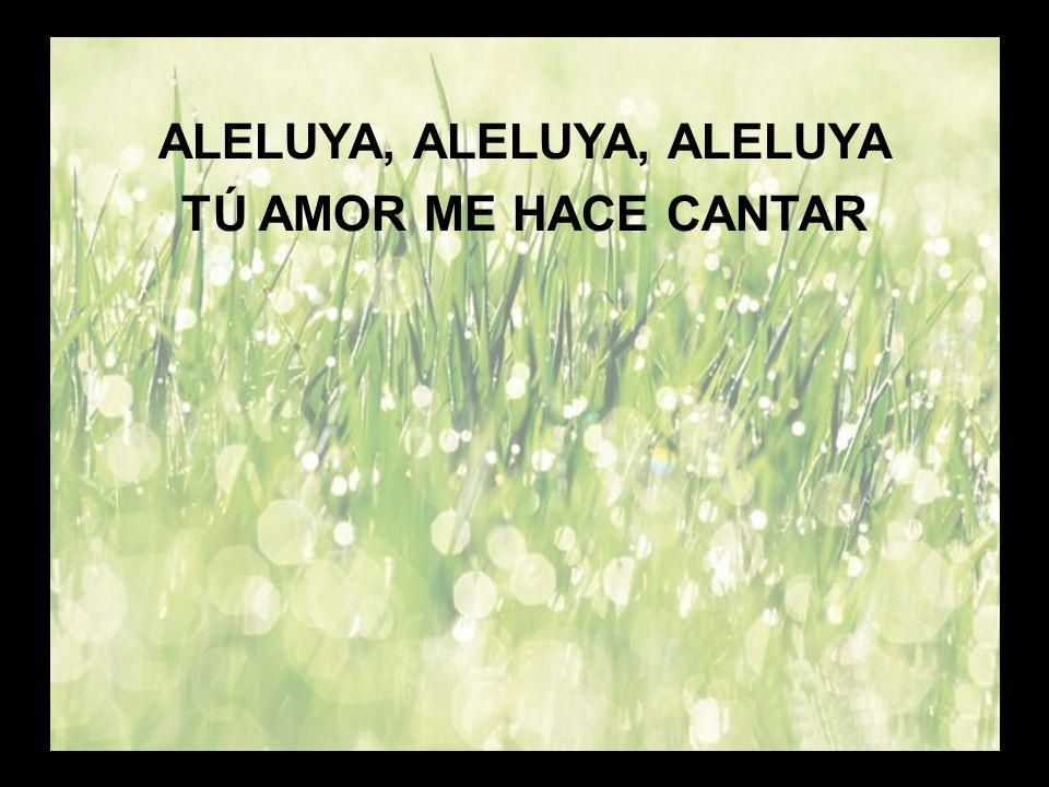 Tu amor me asombra (2) ALELUYA, ALELUYA, ALELUYA TÚ AMOR ME HACE CANTAR