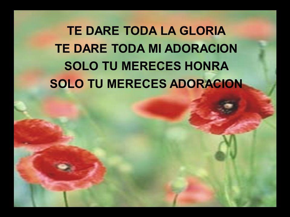 Yo te Alabo (2) TE DARE TODA LA GLORIA TE DARE TODA MI ADORACION SOLO TU MERECES HONRA SOLO TU MERECES ADORACION
