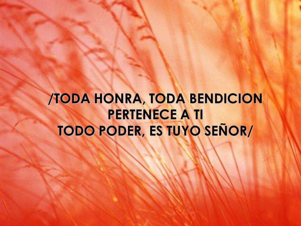 Santo /TODA HONRA, TODA BENDICION PERTENECE A TI TODO PODER, ES TUYO SEÑOR/