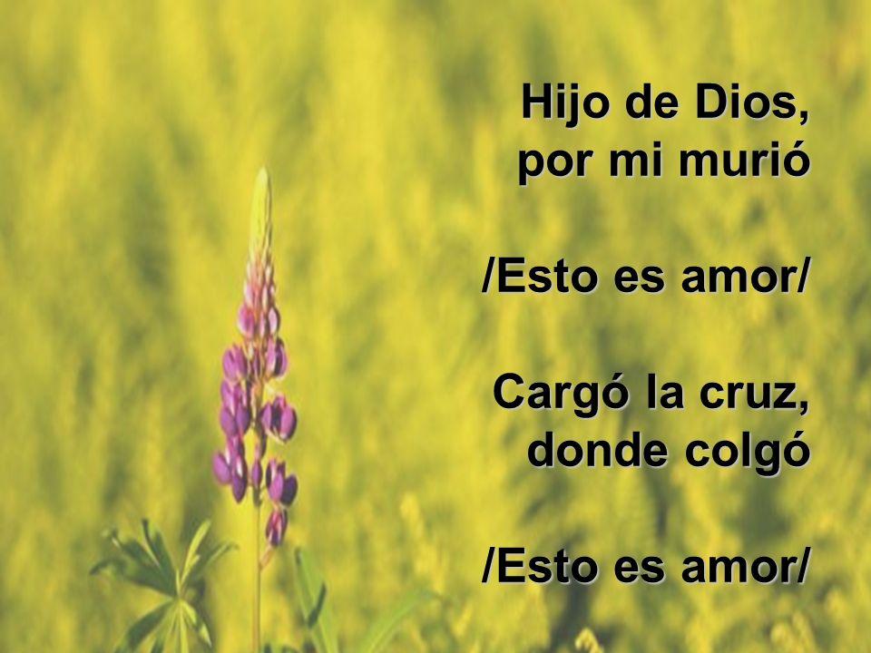 Manos santas Hijo de Dios, por mi murió /Esto es amor/ Cargó la cruz, donde colgó /Esto es amor/