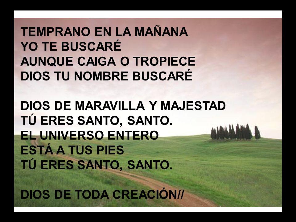Santidad, santidad (2) TOMA MI CORAZON TRANSFORMA MI MENTE CONFORMA MI VOLUNTAD A TI, A TI SEÑOR.