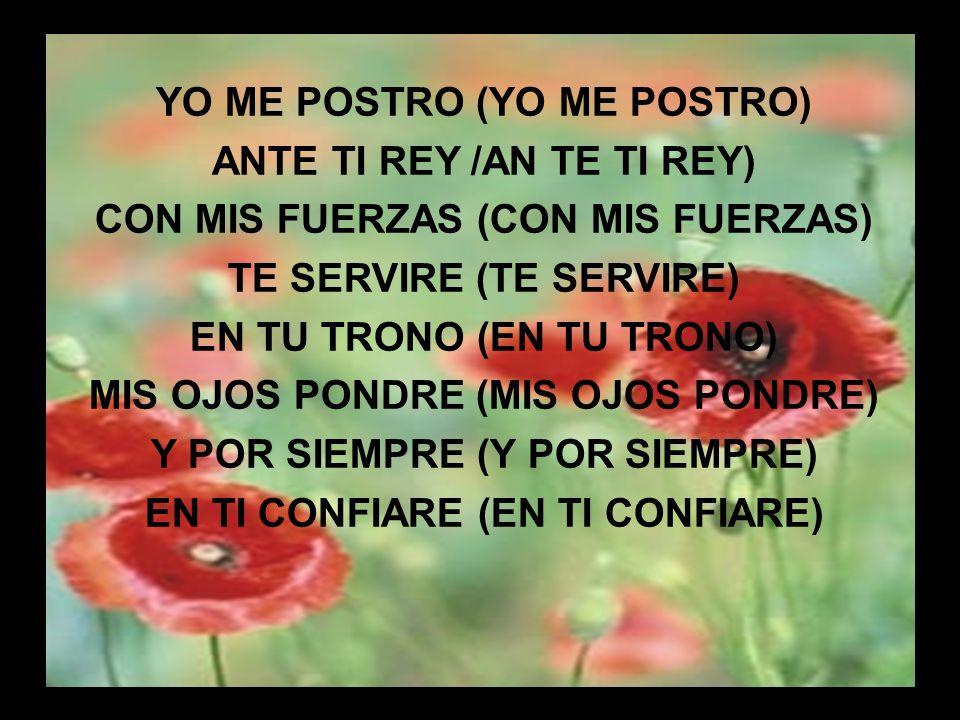 Yo te Alabo III YO ME POSTRO (YO ME POSTRO) ANTE TI REY /AN TE TI REY) CON MIS FUERZAS (CON MIS FUERZAS) TE SERVIRE (TE SERVIRE) EN TU TRONO (EN TU TR