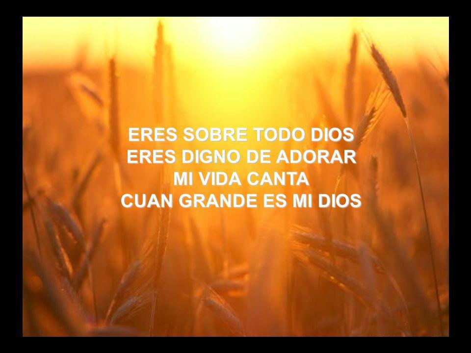 Cuan Grande es (4) ERES SOBRE TODO DIOS ERES DIGNO DE ADORAR MI VIDA CANTA CUAN GRANDE ES MI DIOS