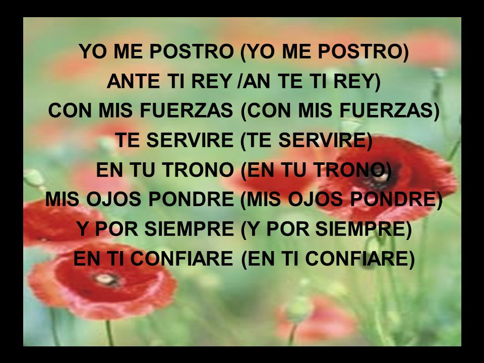 Mi Cristo, mi Rey (1) MI CRISTO, MI REY NADIE ES COMO TÚ TODA MI VIDA QUIERO EXALTAR LAS MARAVILLAS DE TU AMOR CONSUELO, REFUGIO TORRE DE FUERZA Y PODER TODO MI SER, LO QUE YO SOY NUNCA CESE DE ADORAR