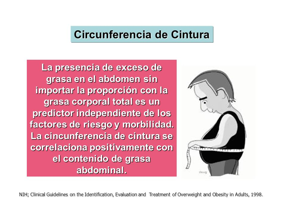La presencia de exceso de grasa en el abdomen sin importar la proporción con la grasa corporal total es un predictor independiente de los factores de