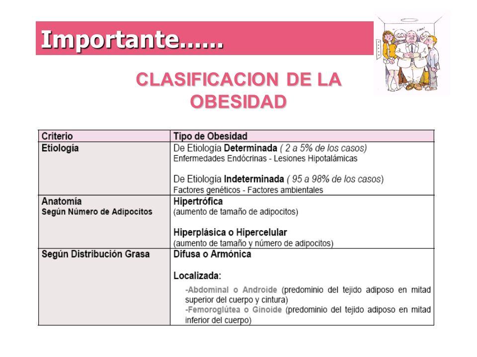 CLASIFICACION DE LA OBESIDAD Importante......