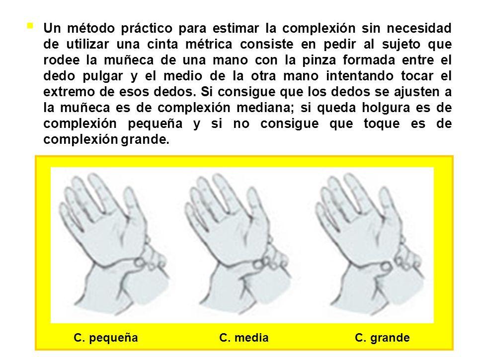 Un método práctico para estimar la complexión sin necesidad de utilizar una cinta métrica consiste en pedir al sujeto que rodee la muñeca de una mano