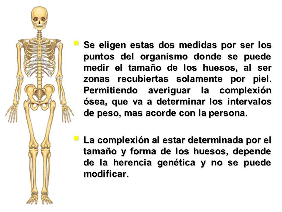 Se eligen estas dos medidas por ser los puntos del organismo donde se puede medir el tamaño de los huesos, al ser zonas recubiertas solamente por piel