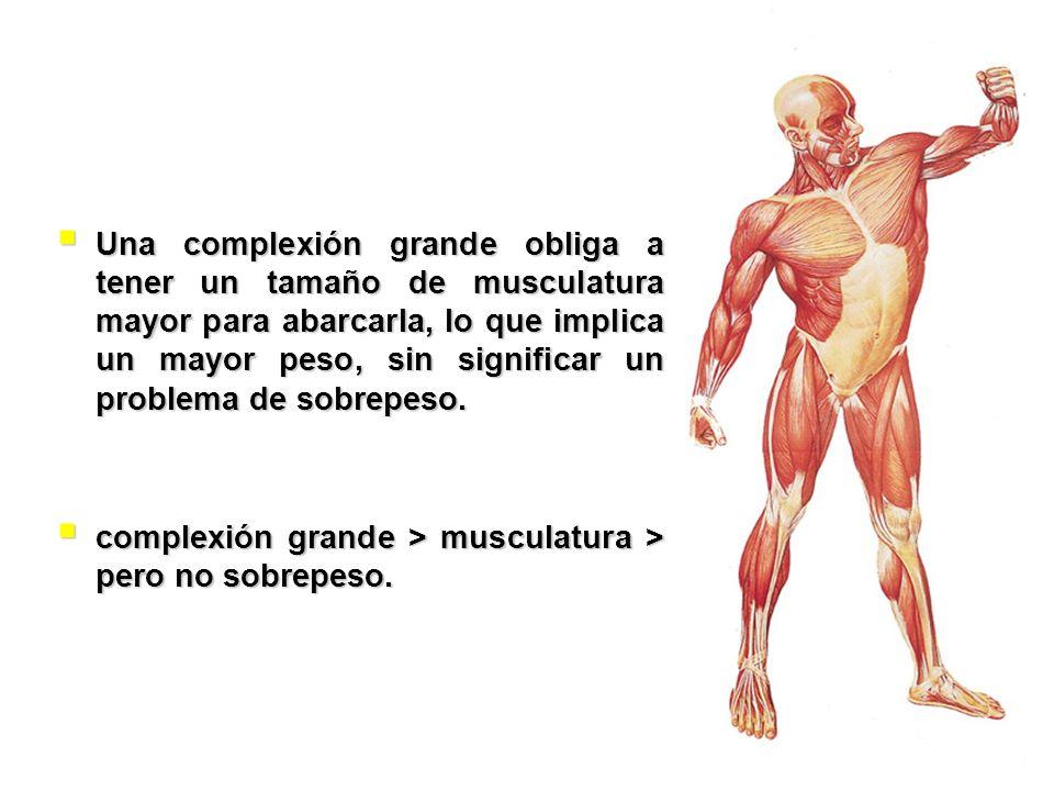Una complexión grande obliga a tener un tamaño de musculatura mayor para abarcarla, lo que implica un mayor peso, sin significar un problema de sobrep