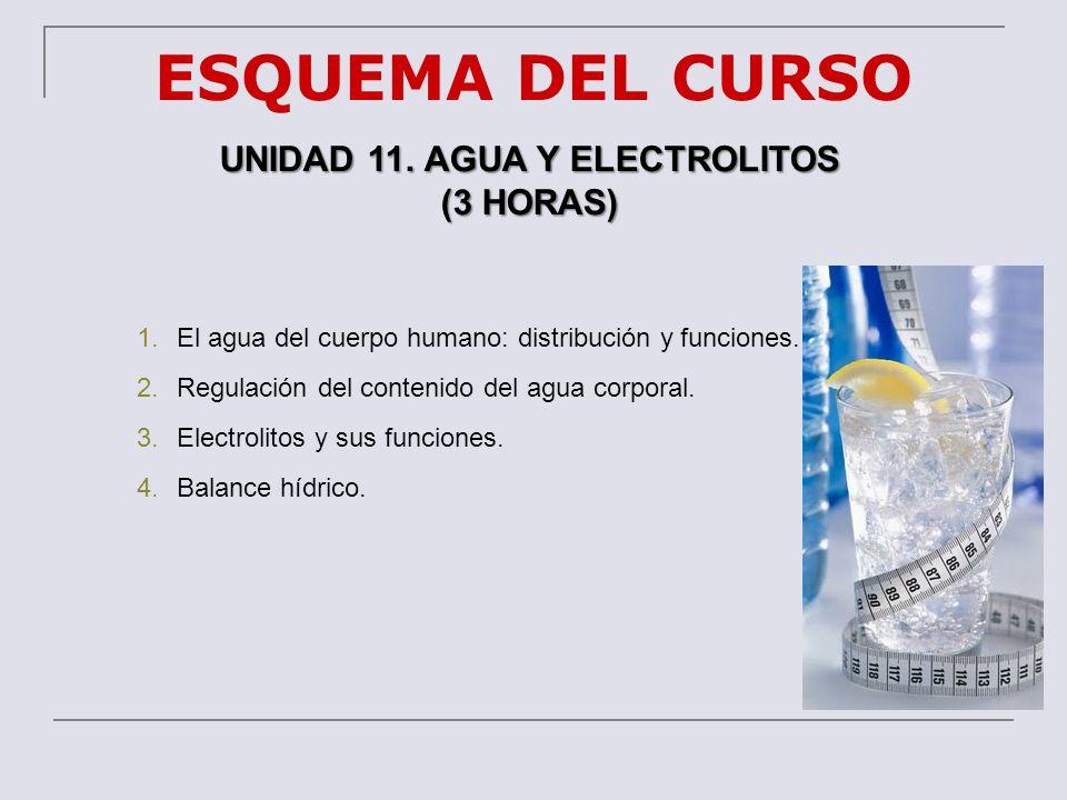 ESQUEMA DEL CURSO UNIDAD 11. AGUA Y ELECTROLITOS (3 HORAS) 1.El agua del cuerpo humano: distribución y funciones. 2.Regulación del contenido del agua