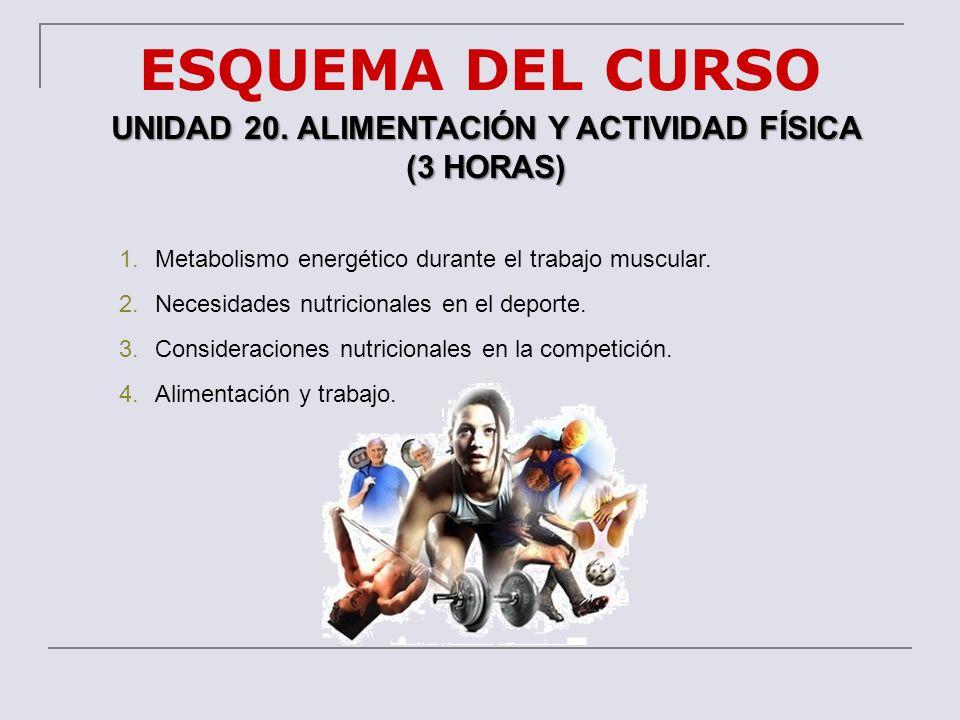 ESQUEMA DEL CURSO UNIDAD 20. ALIMENTACIÓN Y ACTIVIDAD FÍSICA (3 HORAS) 1.Metabolismo energético durante el trabajo muscular. 2.Necesidades nutricional