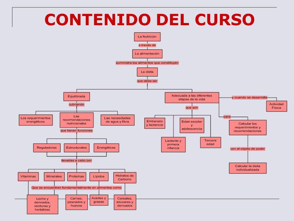 ESQUEMA DEL CURSO UNIDAD 1 INTRODUCCIÓN A LA NUTRICIÓN Y DIETÉTICA (3 HORAS) 1.