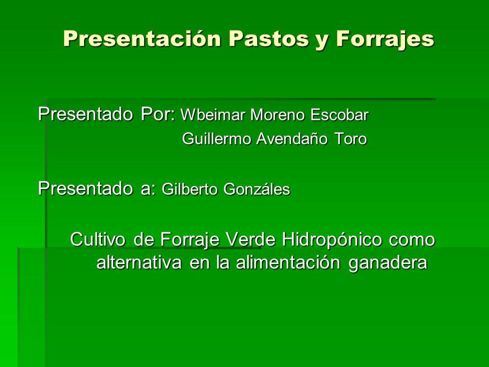 Presentación Pastos y Forrajes Presentado Por: Wbeimar Moreno Escobar Guillermo Avendaño Toro Guillermo Avendaño Toro Presentado a: Gilberto Gonzáles