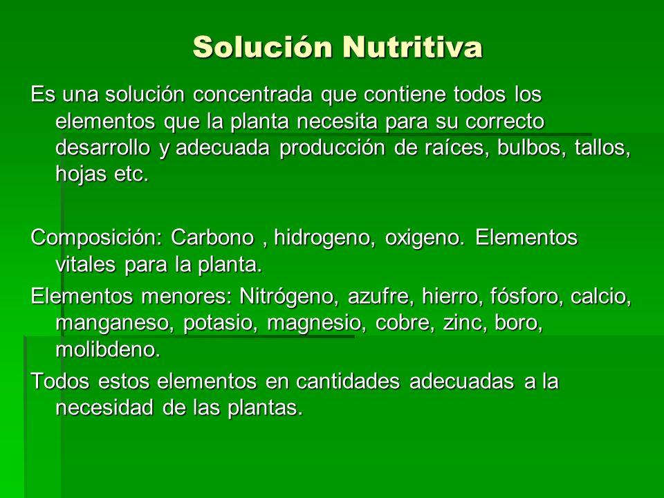 Solución Nutritiva Es una solución concentrada que contiene todos los elementos que la planta necesita para su correcto desarrollo y adecuada producci