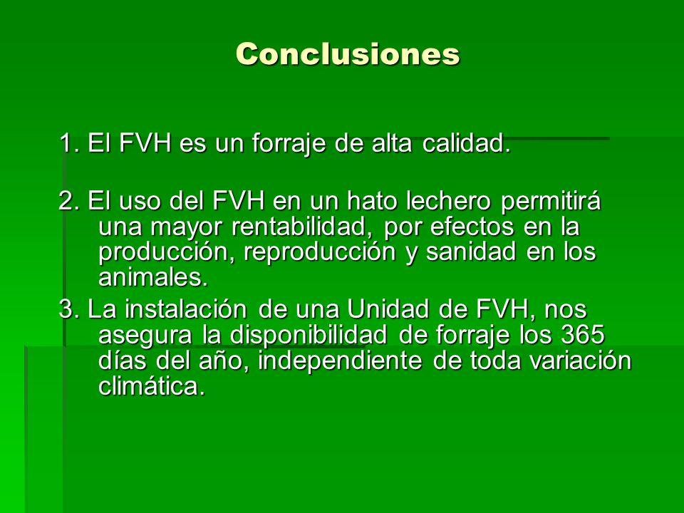 Conclusiones 1. El FVH es un forraje de alta calidad. 2. El uso del FVH en un hato lechero permitirá una mayor rentabilidad, por efectos en la producc