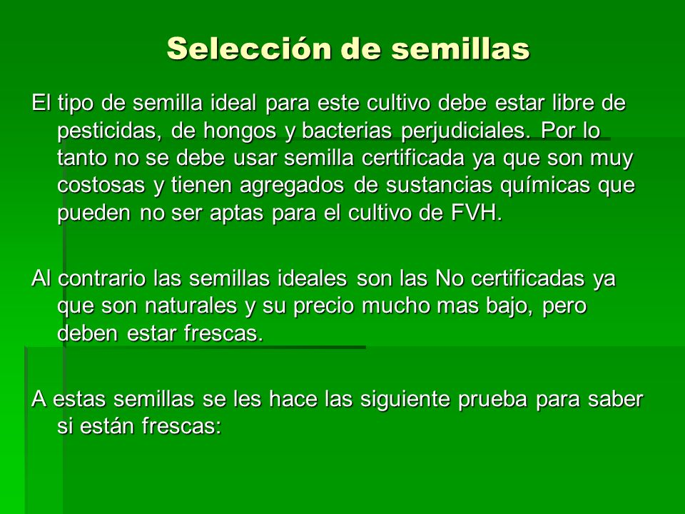 Selección de semillas El tipo de semilla ideal para este cultivo debe estar libre de pesticidas, de hongos y bacterias perjudiciales. Por lo tanto no