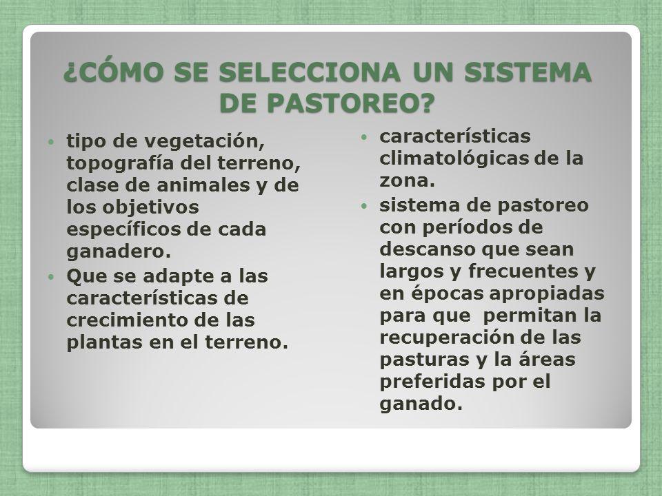 ¿CÓMO SE SELECCIONA UN SISTEMA DE PASTOREO? tipo de vegetación, topografía del terreno, clase de animales y de los objetivos específicos de cada ganad