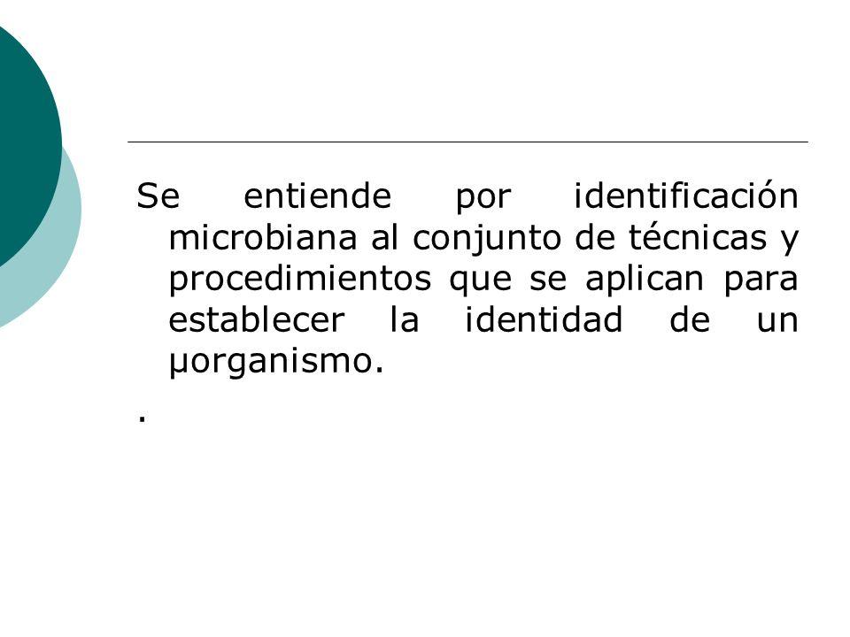Se entiende por identificación microbiana al conjunto de técnicas y procedimientos que se aplican para establecer la identidad de un µorganismo..