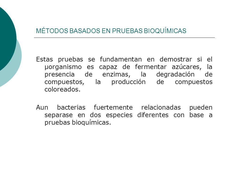 MÉTODOS BASADOS EN PRUEBAS SEROLÓGICAS.