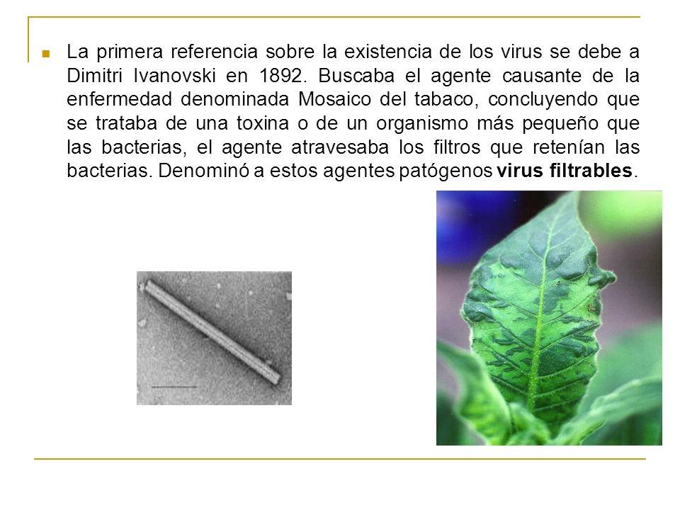 La primera referencia sobre la existencia de los virus se debe a Dimitri Ivanovski en 1892. Buscaba el agente causante de la enfermedad denominada Mos