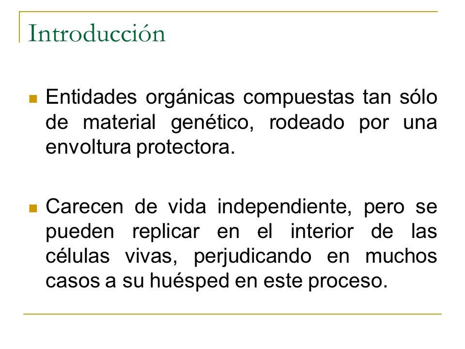 Introducción Entidades orgánicas compuestas tan sólo de material genético, rodeado por una envoltura protectora. Carecen de vida independiente, pero s