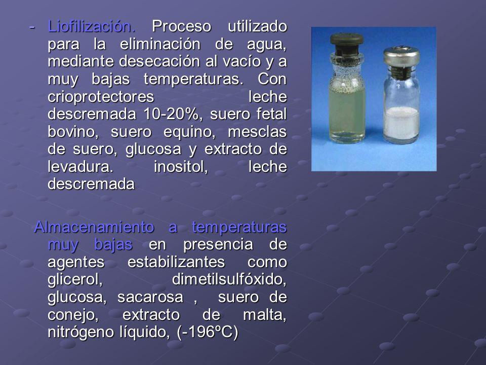 -Liofilización. Proceso utilizado para la eliminación de agua, mediante desecación al vacío y a muy bajas temperaturas. Con crioprotectores leche desc