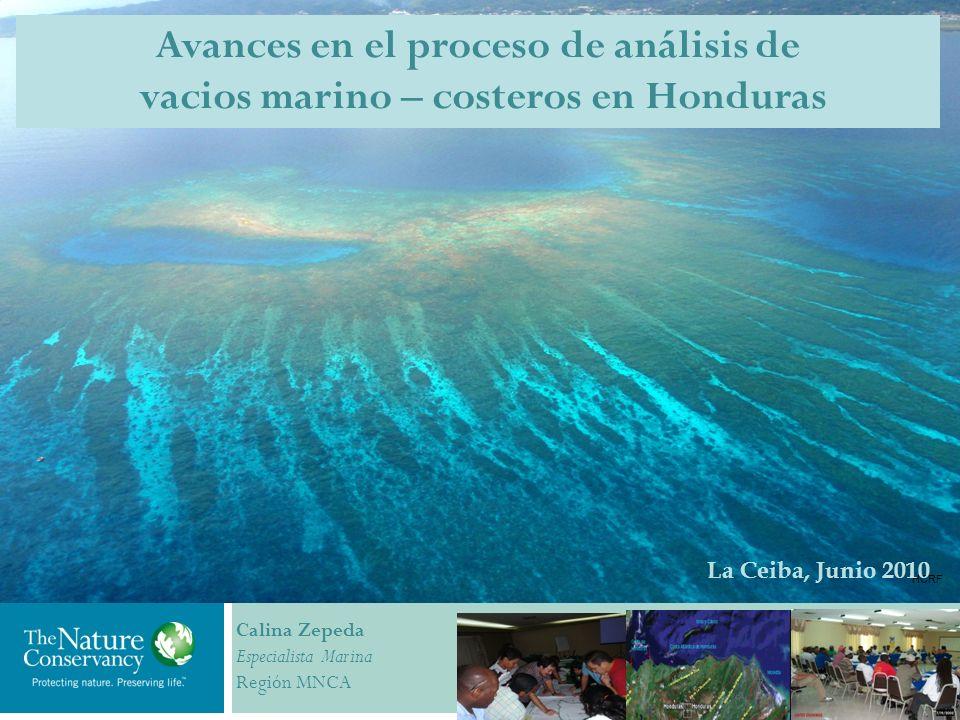 HCRF La Ceiba, Junio 2010 Calina Zepeda Especialista Marina Región MNCA Avances en el proceso de análisis de vacios marino – costeros en Honduras
