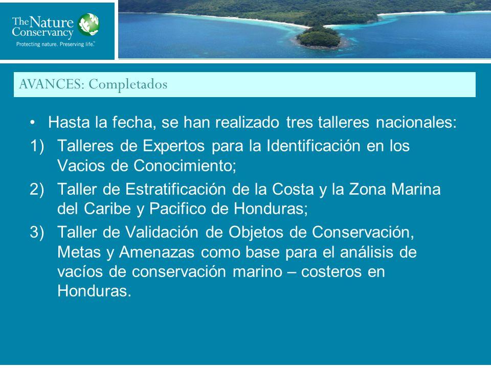 Title of My Slide AVANCES: Completados Hasta la fecha, se han realizado tres talleres nacionales: 1)Talleres de Expertos para la Identificación en los Vacios de Conocimiento; 2)Taller de Estratificación de la Costa y la Zona Marina del Caribe y Pacifico de Honduras; 3)Taller de Validación de Objetos de Conservación, Metas y Amenazas como base para el análisis de vacíos de conservación marino – costeros en Honduras.