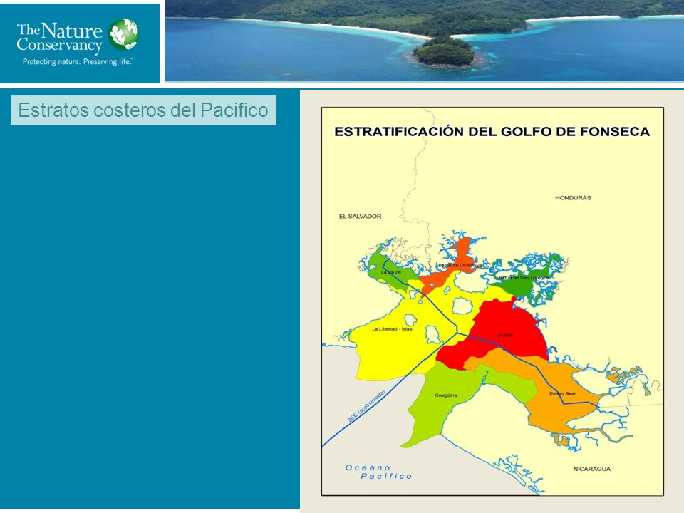 Title of My Slide Estratos costeros del Pacifico