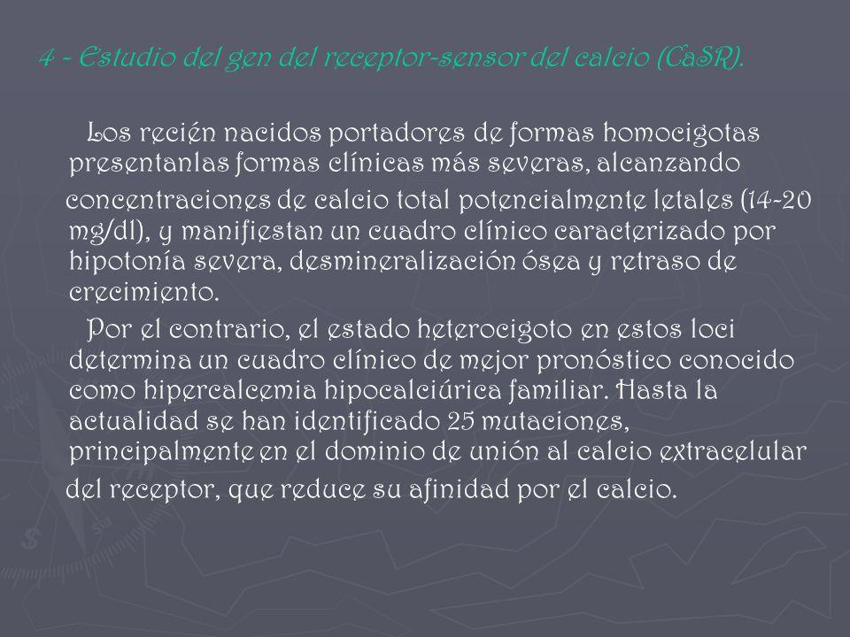 4 - Estudio del gen del receptor-sensor del calcio (CaSR). Los recién nacidos portadores de formas homocigotas presentanlas formas clínicas más severa