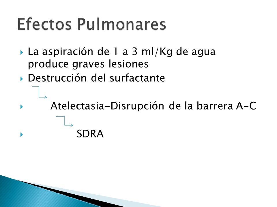 La aspiración de 1 a 3 ml/Kg de agua produce graves lesiones Destrucción del surfactante Atelectasia-Disrupción de la barrera A-C SDRA