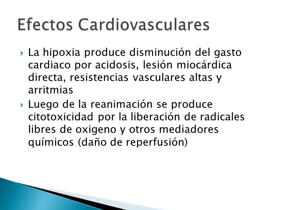 La hipoxia produce disminución del gasto cardiaco por acidosis, lesión miocárdica directa, resistencias vasculares altas y arritmias Luego de la reani