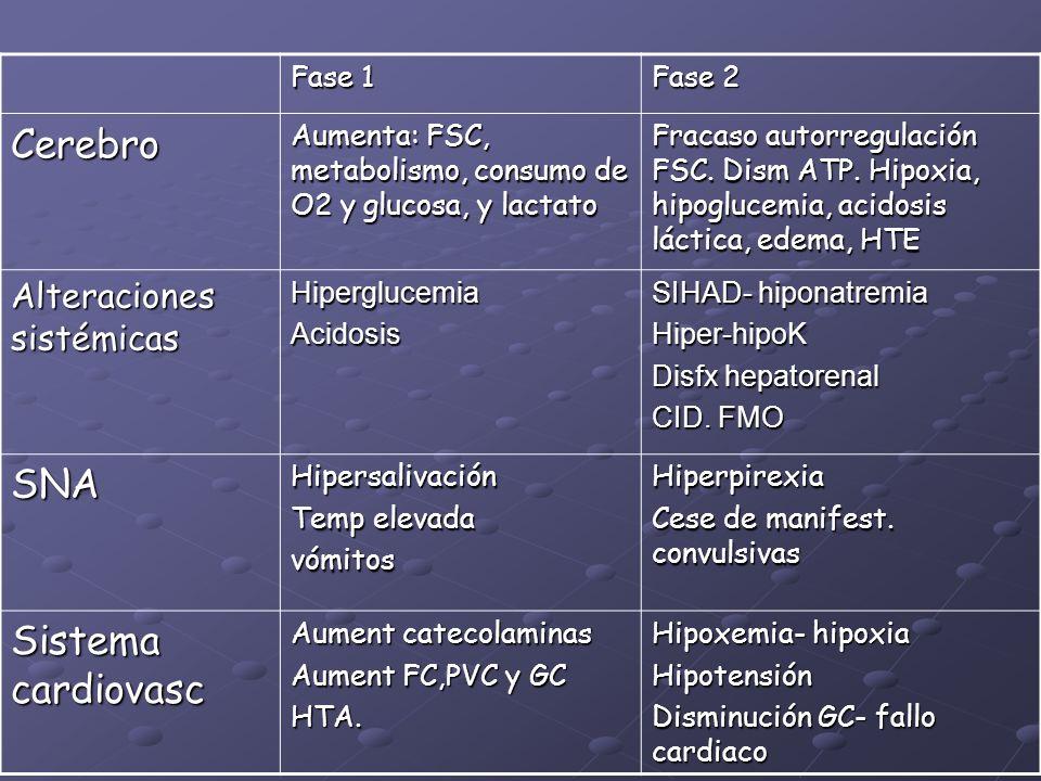 Fase 1 Fase 2 Cerebro Aumenta: FSC, metabolismo, consumo de O2 y glucosa, y lactato Fracaso autorregulación FSC. Dism ATP. Hipoxia, hipoglucemia, acid