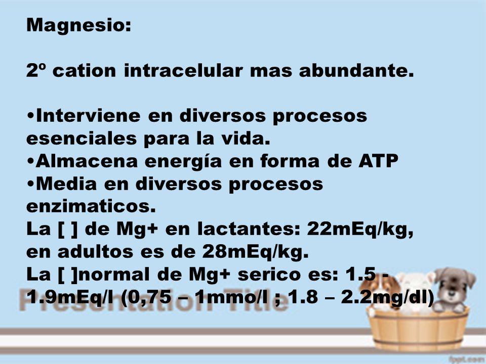 Magnesio: 2º cation intracelular mas abundante. Interviene en diversos procesos esenciales para la vida. Almacena energía en forma de ATP Media en div