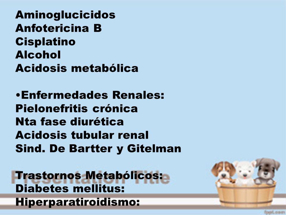 Aminoglucicidos Anfotericina B Cisplatino Alcohol Acidosis metabólica Enfermedades Renales: Pielonefritis crónica Nta fase diurética Acidosis tubular