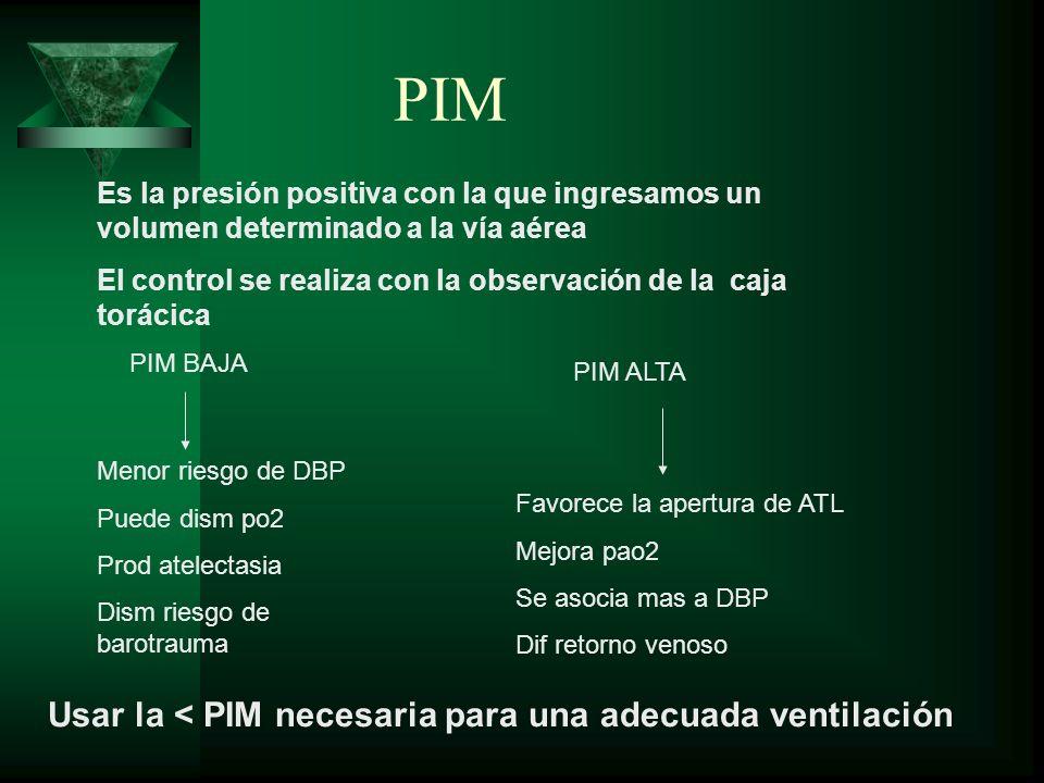 PIM Es la presión positiva con la que ingresamos un volumen determinado a la vía aérea El control se realiza con la observación de la caja torácica PI