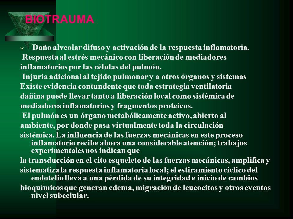 Daño alveolar difuso y activación de la respuesta inflamatoria. Respuesta al estrés mecánico con liberación de mediadores inflamatorios por las célula