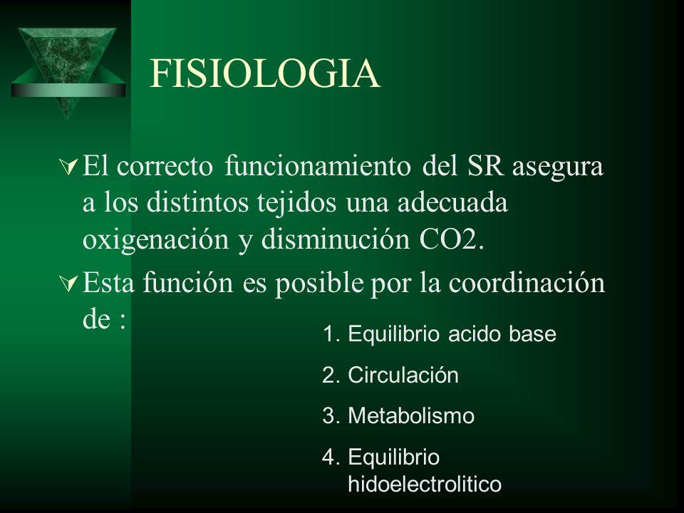 FISIOLOGIA El correcto funcionamiento del SR asegura a los distintos tejidos una adecuada oxigenación y disminución CO2. Esta función es posible por l