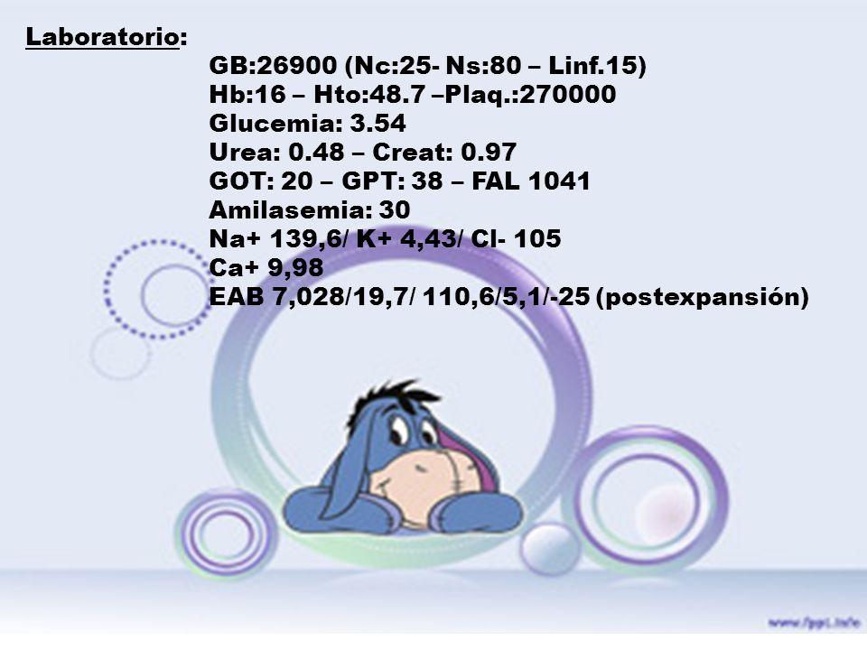 Laboratorio: GB:26900 (Nc:25- Ns:80 – Linf.15) Hb:16 – Hto:48.7 –Plaq.:270000 Glucemia: 3.54 Urea: 0.48 – Creat: 0.97 GOT: 20 – GPT: 38 – FAL 1041 Ami