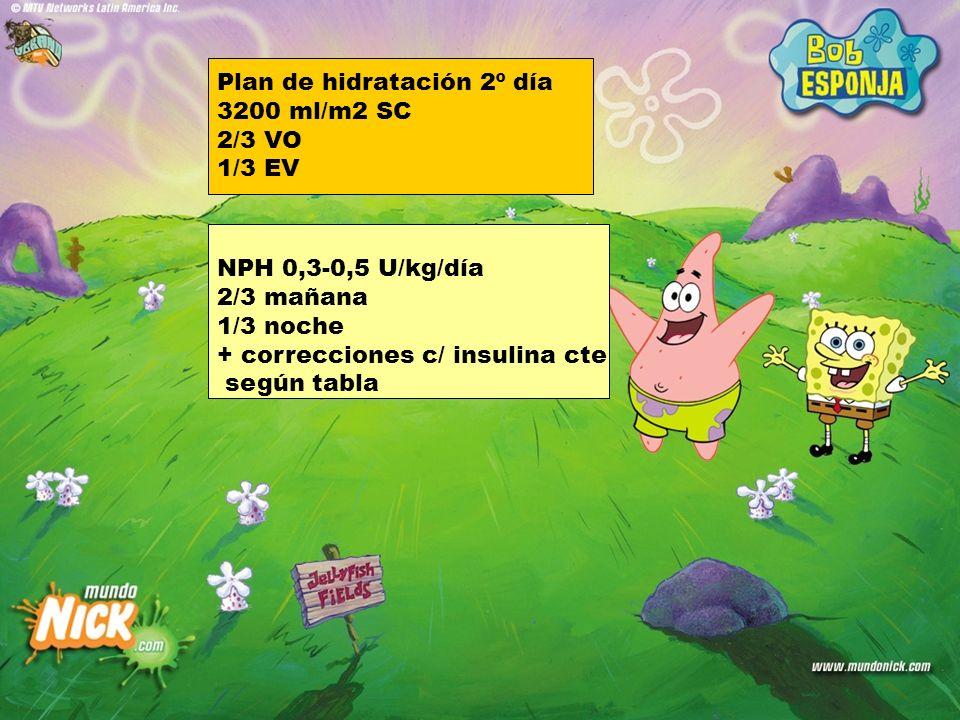 Plan de hidratación 2º día 3200 ml/m2 SC 2/3 VO 1/3 EV NPH 0,3-0,5 U/kg/día 2/3 mañana 1/3 noche + correcciones c/ insulina cte según tabla