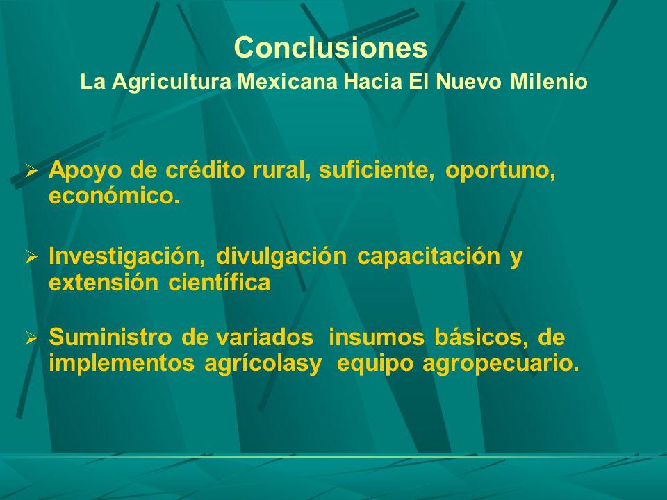 Conclusiones La Agricultura Mexicana Hacia El Nuevo Milenio Apoyo de crédito rural, suficiente, oportuno, económico. Investigación, divulgación capaci