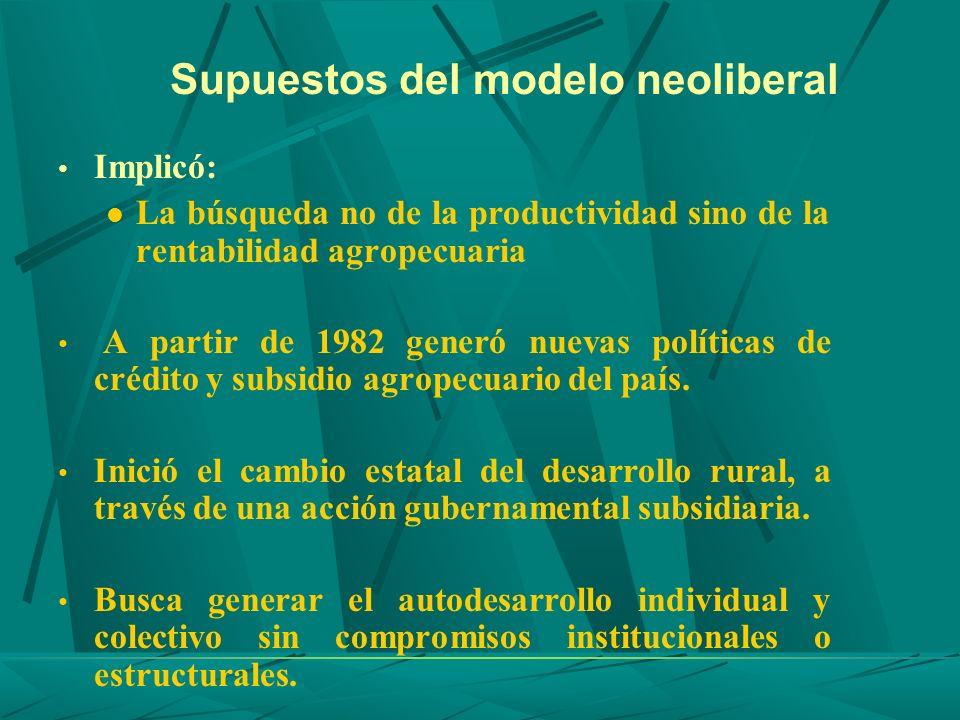 Supuestos del modelo neoliberal Implicó: La búsqueda no de la productividad sino de la rentabilidad agropecuaria A partir de 1982 generó nuevas políti
