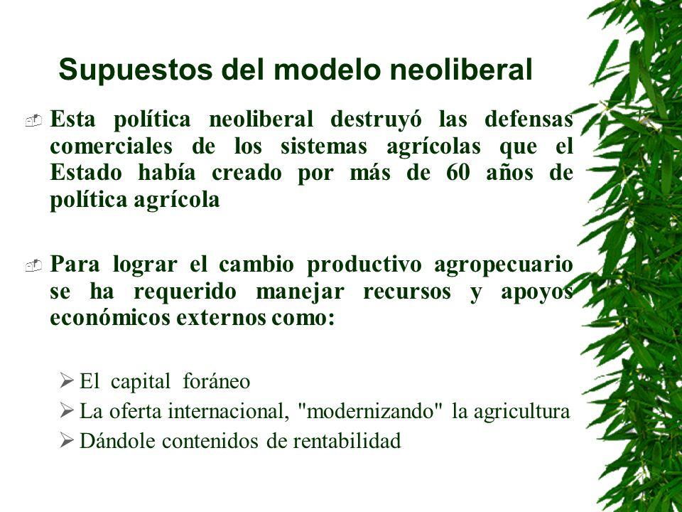 Supuestos del modelo neoliberal Ha generado múltiples compromisos sociales a la administración oficial al cambiar los contenidos de las políticas y de las acciones gubernamentales.