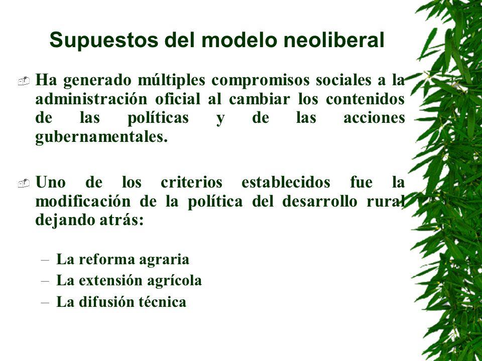 Supuestos del modelo neoliberal Implicó: –La búsqueda no de la productividad sino de la rentabilidad agropecuaria A partir de 1982 generó nuevas políticas de crédito y subsidio agropecuario del país.