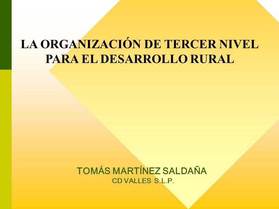 LA ORGANIZACIÓN DE TERCER NIVEL PARA EL DESARROLLO RURAL TOMÁS MARTÍNEZ SALDAÑA CD VALLES S.L.P.