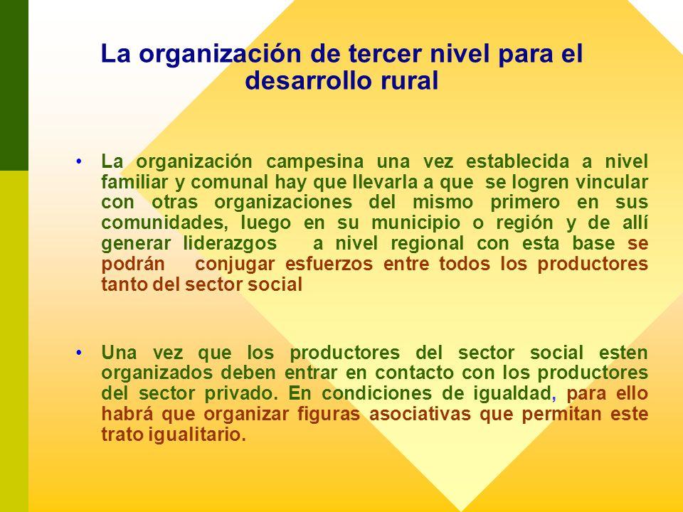 La organización de tercer nivel para el desarrollo rural La organización campesina una vez establecida a nivel familiar y comunal hay que llevarla a q