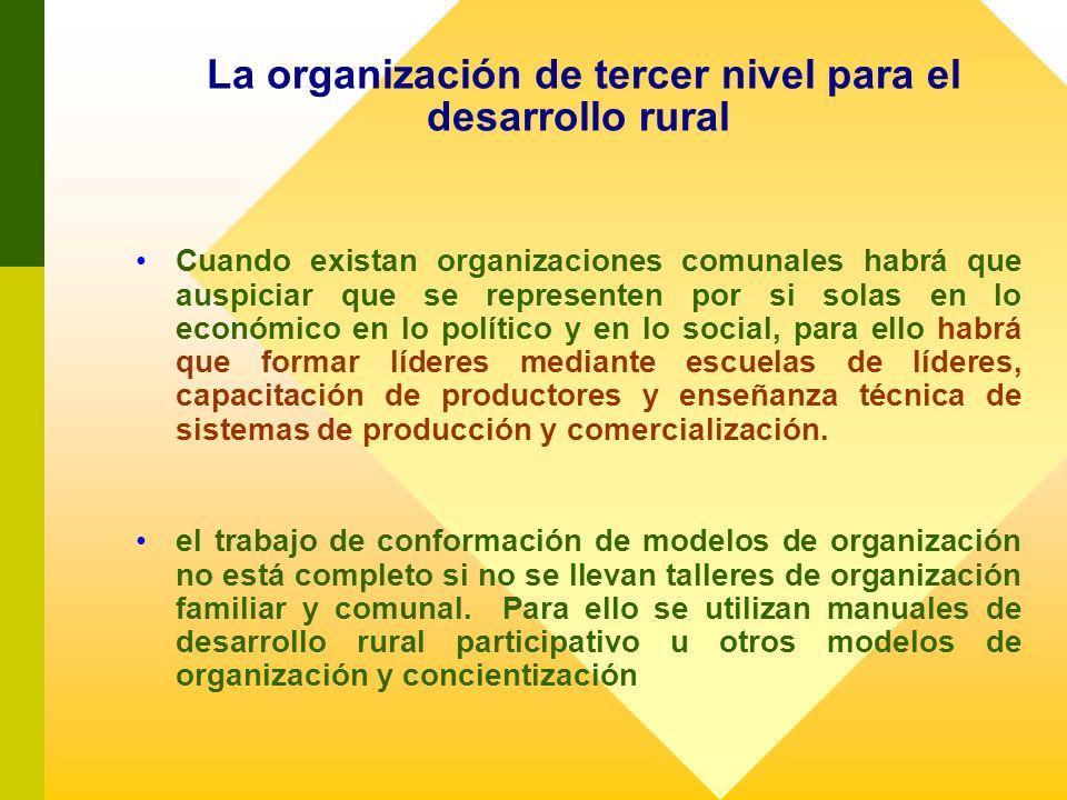 La organización de tercer nivel para el desarrollo rural Cuando existan organizaciones comunales habrá que auspiciar que se representen por si solas e