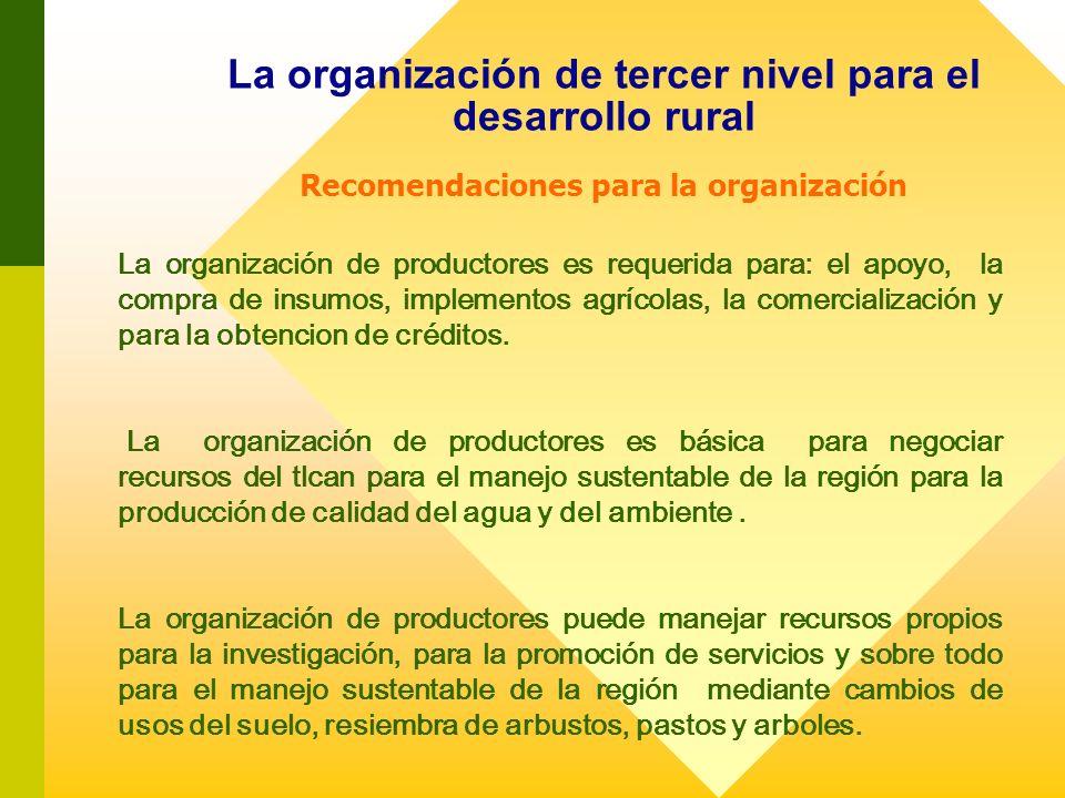 La organización de tercer nivel para el desarrollo rural Recomendaciones para la organización La organización de productores es requerida para: el apo