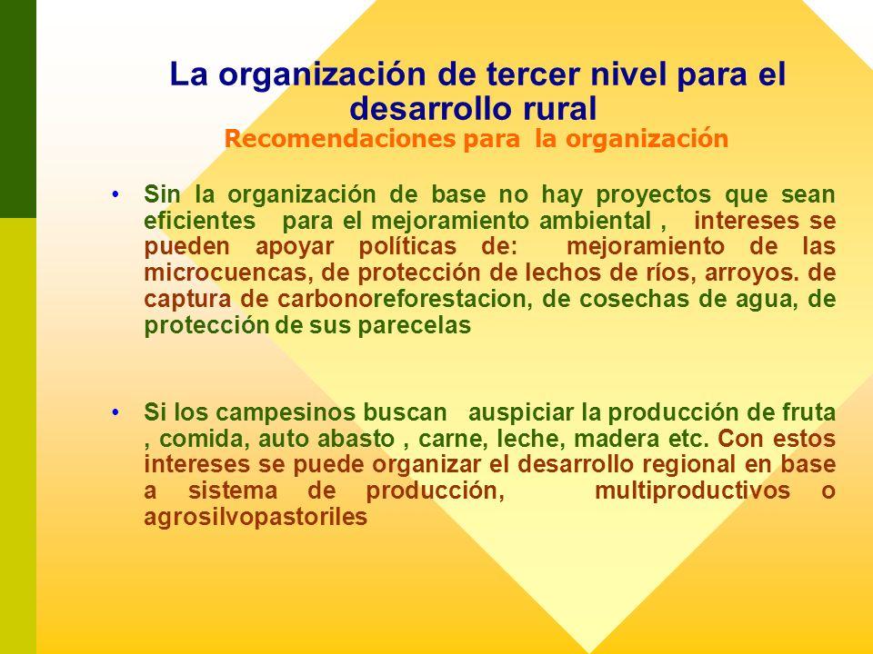La organización de tercer nivel para el desarrollo rural Recomendaciones para la organización Sin la organización de base no hay proyectos que sean ef